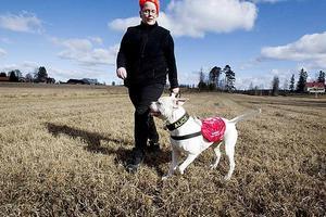 Västen berättar. Den röda västen betyder att Alice är under utbildning till diabeteshund. När hon är färdigutbildad får hon en gul väst.