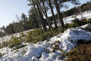 Ledningen ringlar sig som en orm längs marken. Kilometervis med koppartråd stals natten till 2 mars.