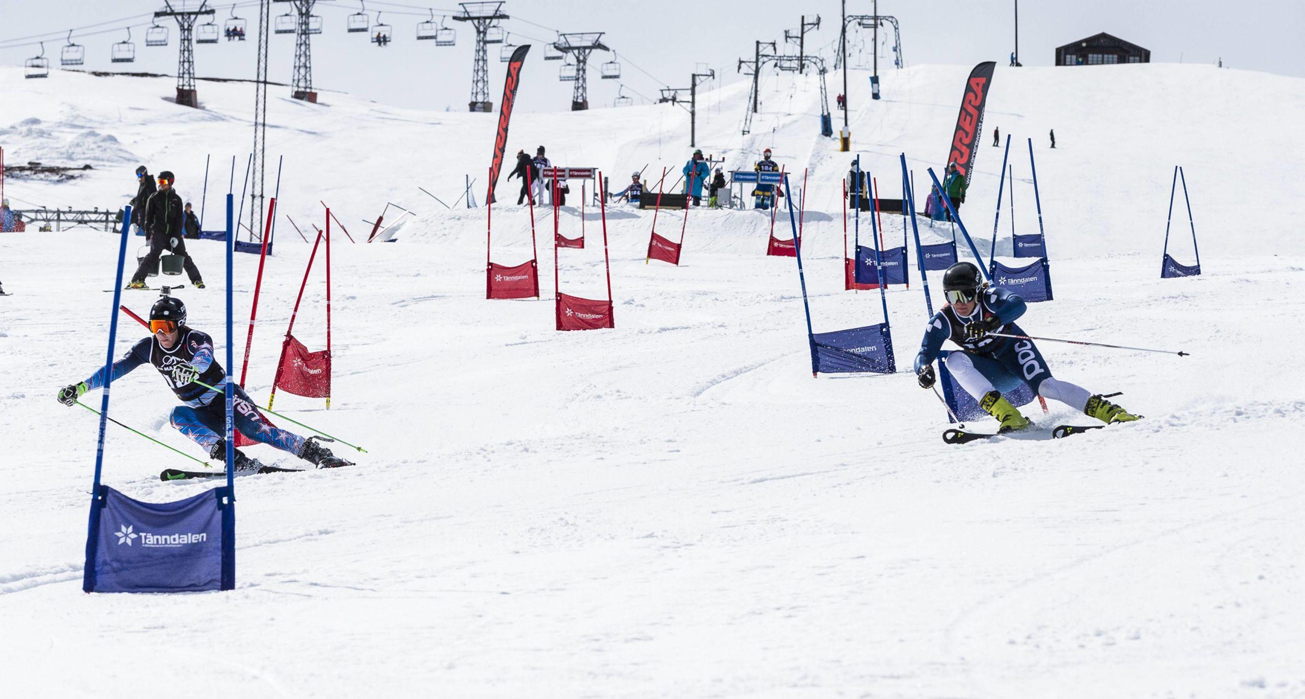 Slalom ar min gren