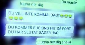 I flera konversationer via Telegram ska 22-åringen ha kränkt och systematiskt hotat Tova Moberg, enligt polisens förundersökning. Expojkvännen själv nekar till det.Foto: Polisens förundersökning