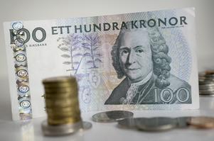 Pengakungen. När Linnés 300-årsjubileum firas snålas det inte på pr-slantarna. Foto:FredrikSandberg / SCANPIX