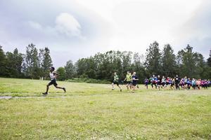 45 deltagare ställde upp i milsloppet på Hambojoggen.