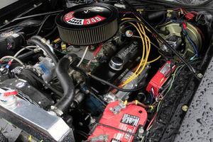 Under huven på Youngs Roadrunner ruvar en 5,4 liters V8.