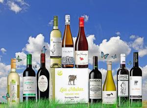Intresset för ekologiskt vin har aldrig varit större. Förra året slog försäljningen på Systemet rekord med en ökning pånära 100 procent. Foto/montage: Sune Liljevall