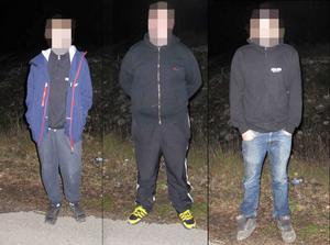 De tre män som nu åtalas greps strax efter brottet. Bilden är ett montage.
