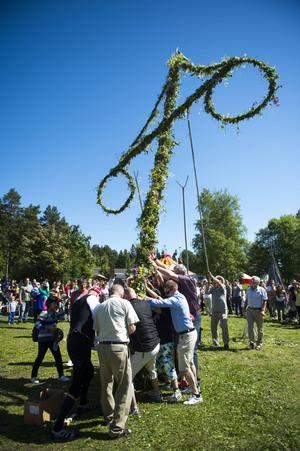 Efter Iso Porovics högtidstal på Norra berget hjälptes besökare åt att resa den blomsterklädda midsommarstången.