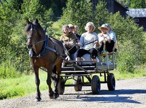Anna-Karin Bouvin styrde Pilbest med stadig hand medan Sofia Sahlin spelade musik och berättade historien om S:t Olav medan färden gick längs Ljungan.