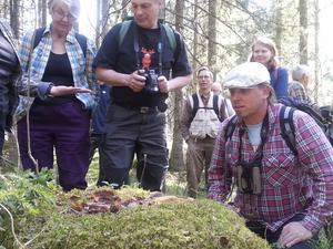 Sebastian Kirppu (rutig skjorta och basker) föreläste om läget i skogen och lärde ut arter som visar på höga naturvärden.