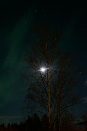 Norrsken från Bredsand i  Sundsvall, foto: Helena Midebring.