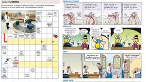 Här är en del av sidan 29 den 7 januari.