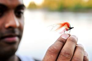 Just den här flugan föll årets första lax för. Den blev lite tilltufsad. Men den är välbunden, så den kan hålla för fler laxar.