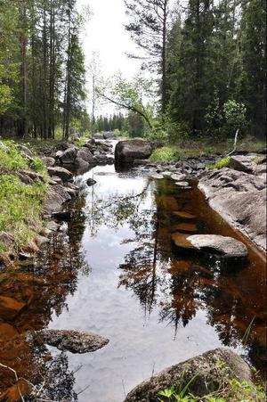 Många vackra platser finns längs vandringsstråken i naturreservatet.