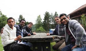 Awtsana Teweldebrmn, Tesfaldet Ghedam, Hussam Al Hajeh, Azad Karimi och Ghasem Goodavzi uppskattade att vara i Västerby.