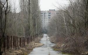 Spökstaden Pripjat som ligger cirka två kilometer från reaktor 4 i Tjernobyl. När olyckan skedde hade staden 48 000 invånare som evakuerades ett par dagar efter olyckan. Det är 25 år sedan kärnkraftverket havererade klockan tjugo över ett på natten den 26 april, 1986. Efter att ha utsatt systemen för ett antal tester exploderade reaktorn och mängder med radioaktivt avfall spreds över Europa. Foto: Henrik Montgomery / SCANPIX
