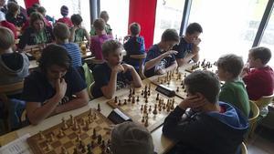 vinnarlaget. Kardo Omar, Martin Vatn, Benjamin Emmoth och Ludvig Carlsson från Jensen grundskola i Västerås vann guld i mellanstadieklassen vid Skollags-SM i schack som avgjordes i Mölnlycke i helgen. Jensen får därmed representera Sverige vid nordiska mästerskapen i september.