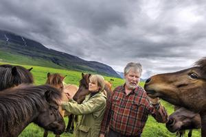 Thordis Alda Sigurdardottir och Gunnar B Dungal är ett slags sofistikerade cowboys med hästuppfödning utanför Reykjavik och djur på norra delen av ön.   Foto: Nicklas Elmrin
