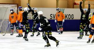 Stefan Larsson jublar efter sitt 1-0-mål i mitten av den första halvleken.