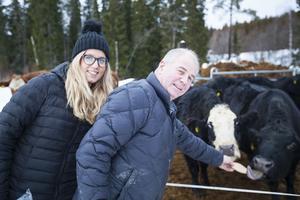 Agnes Jörgensen och hennes pappa Anders Jörgensen bjuder några kor på mjukt bröd.