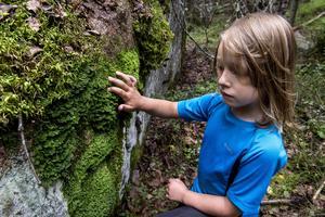 Sexåriga Stella Boström passade på att känna på de olika mossorna som finns i skogen.