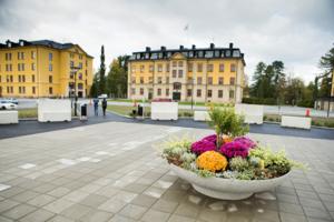 Hågestaområdet i Sollefteå, gamla I21, har fått nya ägare.