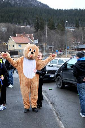 En björn sprang lös på området.