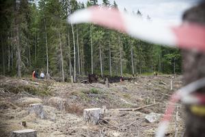 Ett larm om en skogsbrand norr om Nyhammar inkom strax före lunch på onsdagen.
