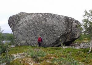 Stenen sedd från norra sidan