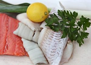 De flesta fisksorter kan malas, köras i mixer eller finhackas i matberedare. Olika fisksorter kan dessutom blandas med varandra.   Foto: Dan Strandqvist