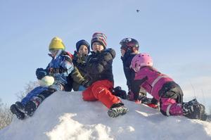Uppflugna på en snöhög berättar några killar om vikten av multisportarenan men också att de går på skidskoskola.