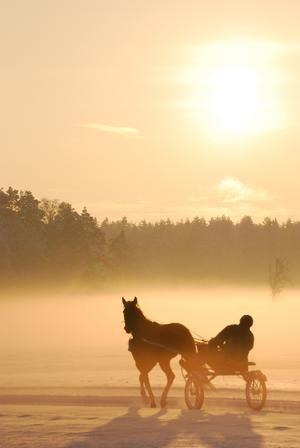 Min pappa Pelle var ute och körde våran häst, Ännu Mera Kosing på julafton. Det blev