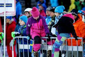 Publiken var inte stor men desto gladare för de svenska framgångarna.