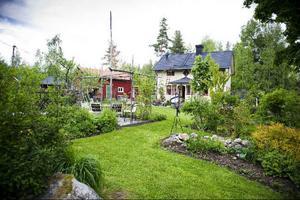 Ann-Chi och Johan Hammarstens trädgård i Alfta visas under evenemanget Tusen trädgårdar i helgen.