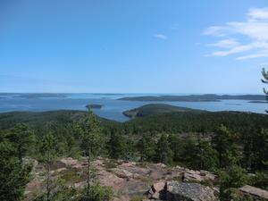 Mjältön, Sveriges högsta ö, behöver ett förstärkt naturskydd anser WWF.