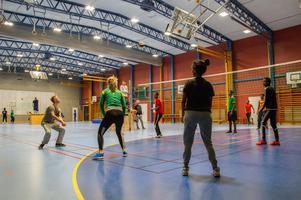 Volleyboll var den aktivitet som Ljusdals fritid började med, när föreningen startade 2016.
