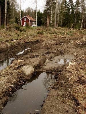 Av skogsbolag avverkad och sedan sönderkörd skog intill sommartorp. Att exempelvis torpägaren på grund av slitage skulle behöva betala eller ha ett medgivande från markägaren för att få plocka bär och sälja syltburkar, eller för att få guida i skogen, är absurt. Inte minst med tanke på att skogsbolaget året efter kan avverka och fullständigt köra sönder skogen.