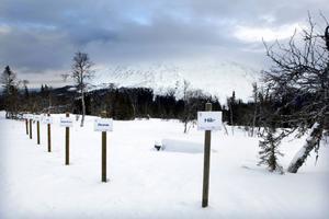 Fortfarande finns tomter till salu i Bydalen alldeles där trädgränsen övergår till kalfjäll.