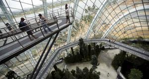 Promenera högt upp i luften i Singapores nya park.