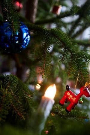 """Under lördagen var det """"bara"""" 12 grader kallt och snålblåst, så då tog julgransförsäljningen fart."""