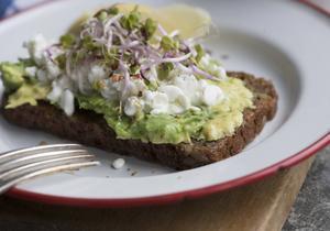 Avokadomackan är en dunderhit på sociala medier, men det är också en förnämlig frukosträtt.   Foto: Fredrik Sandberg/TT