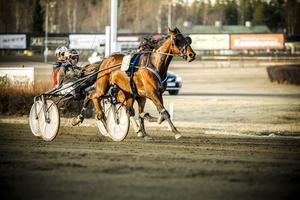 Crooked och Jimmy H Andersson avslutade vasst till en säker seger i V5-1.