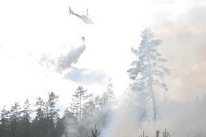 Helikopter vattenbombar branden i Trönö.