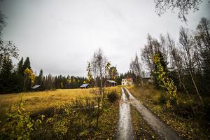 En äng vid en gård i utkanten av Siljeåsen. Här sökte Vildmannen skydd den där natten för snart 60 år sedan.