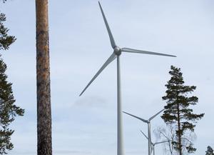 Beslutet om att säga ja till en vindkraftpark i Olsbenning har väckt protester.