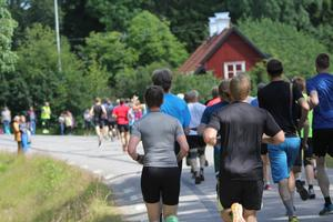 Folkfest. Totalt 320 löpare deltog i Musköloppet.