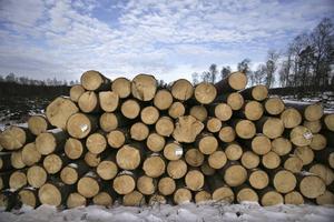 Inte bara skogsindustrin skulle påverkas, utan en kilometerskatt slår hårt mot hela industrin och därmed även mot jobben. I praktiken blir också en skatt på avstånd en glesbygdsskatt. Därför riskerar visionen om att hela landet ska leva enbart stanna vid vackra ord, skriver Magnus Svensson, VD, SCA Logistics och Karolina Boholm, transportdirektör, Skogsindustrierna.