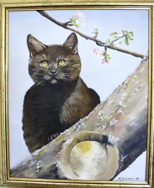 Huskatten. Familjens katt Trisse har förevigats.