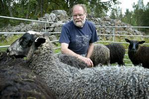 Gärna fler. Curt Axelsson hoppas att det ska ske en nyrekrytering av fårägare i bygden. Lönsamheten är god och det är stor efterfrågan på både kött, skinn och ull. Foto:Peter Ohlsson