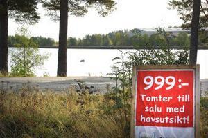Den kommunala tomtrean blev ingen succé. En stackars 999-kronorstomt, här i Stocka,  har sålts.