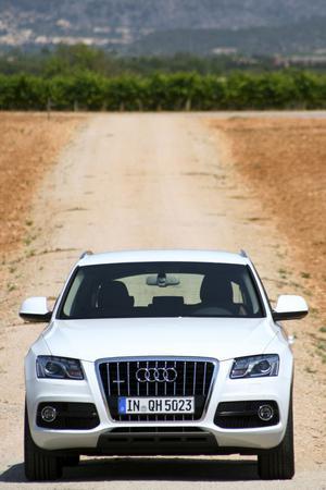 Maffig grill, som alltid på en Audi. Till utseendet är hybridversionen identisk med en vanlig Q5.