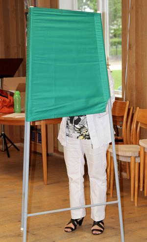 Valdeltagandet var högre än väntat i Alfta.